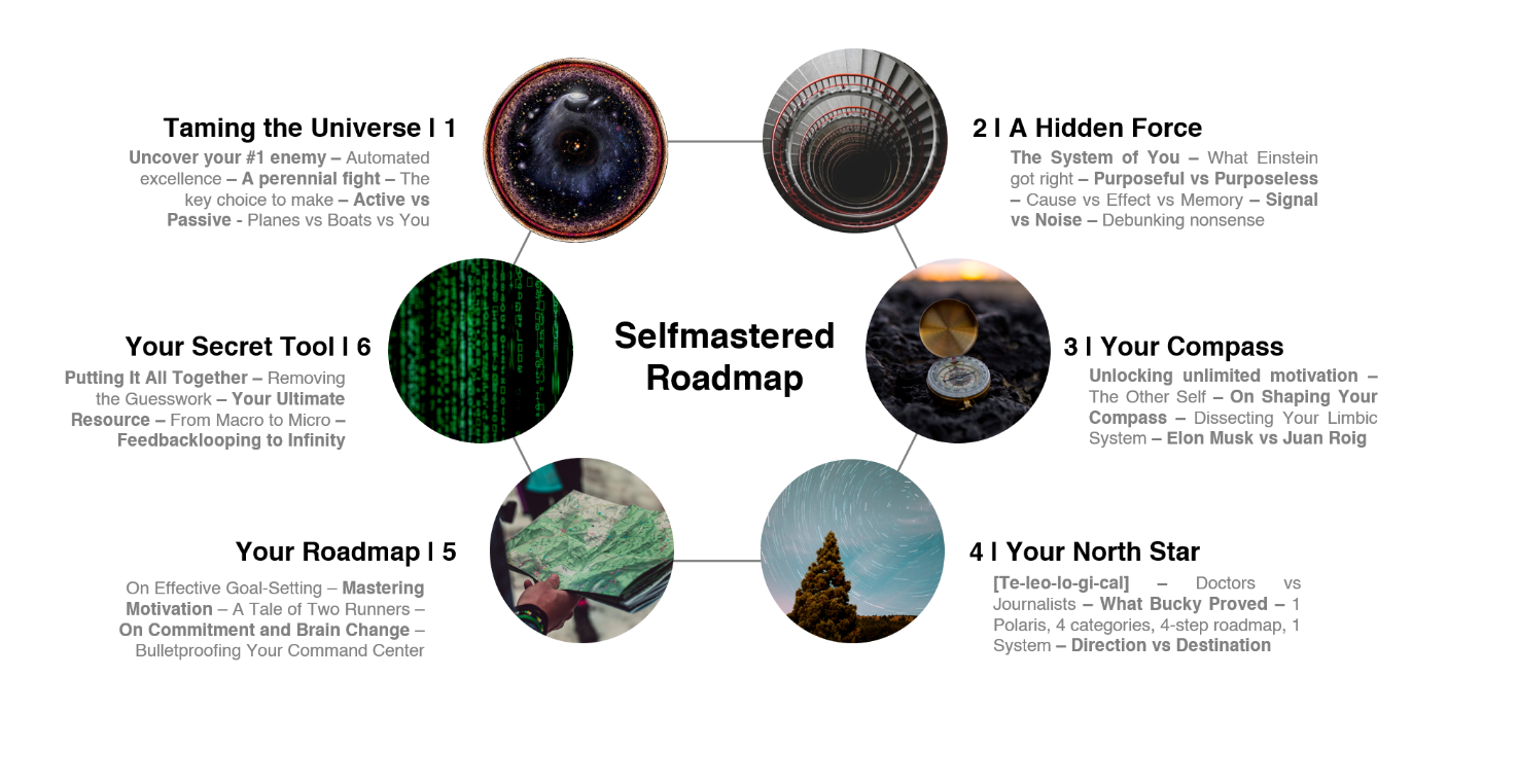 Selfmastered Roadmap – a Fury Review