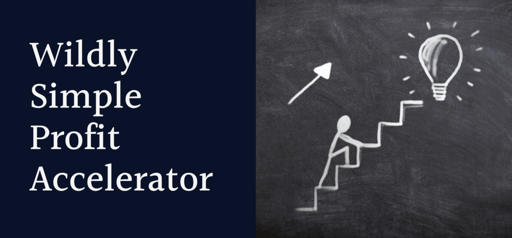 Wildly Simple Profit Accelerator – a Fury Review